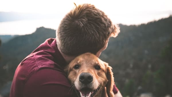 The importance of relationships with our pets
